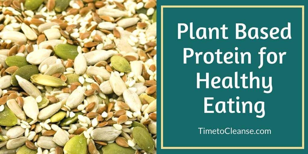 Seeds and plant based proteins