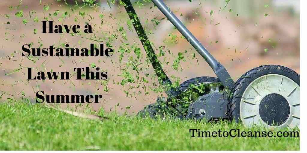 Have a sustainable lawn this summer banner over a push mower and grass