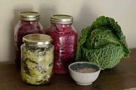 head of cabbage one jar of white sauerkraut two jars of red sauerkraut and white bowl of white sauerkraut