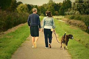 man & woman walking a dog on a country lane