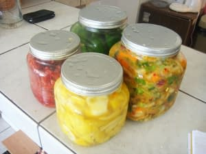 fermented foods in jars
