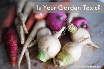 toxic gardening