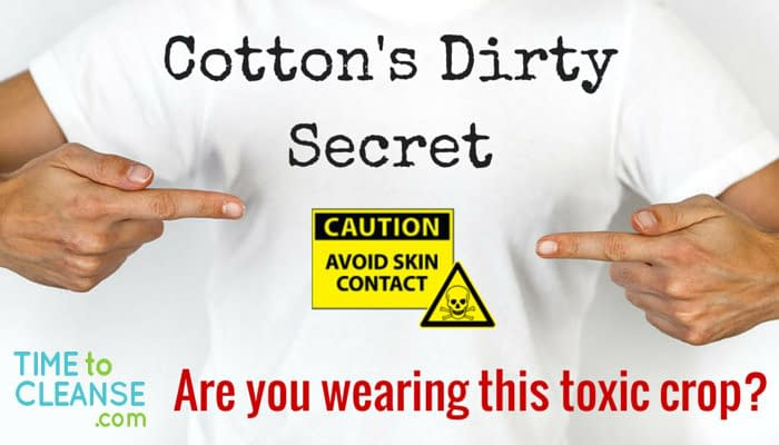 cotton secret main