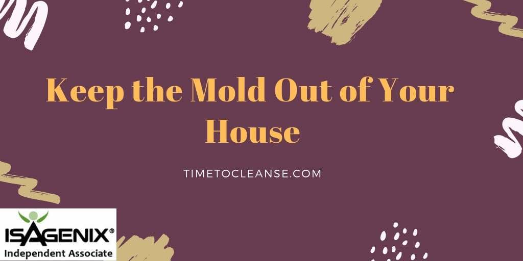 keep the mold out of your house banner