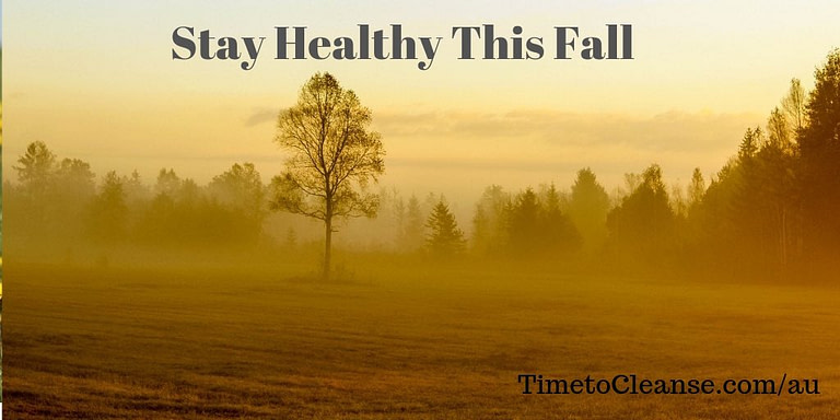 Meadow with trees and foggy fall afternoon and stay healthy this fall banner