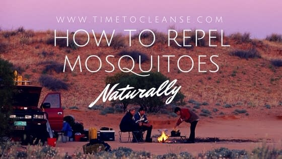 HOW TO REPEL MOSQUITOES NATURALLY