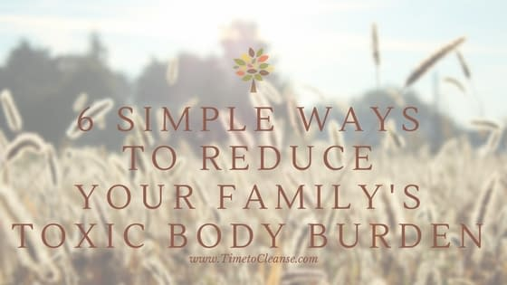 6 Simple Ways to Reduce Your Families Toxic Body Burden