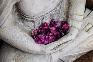 meditating arms