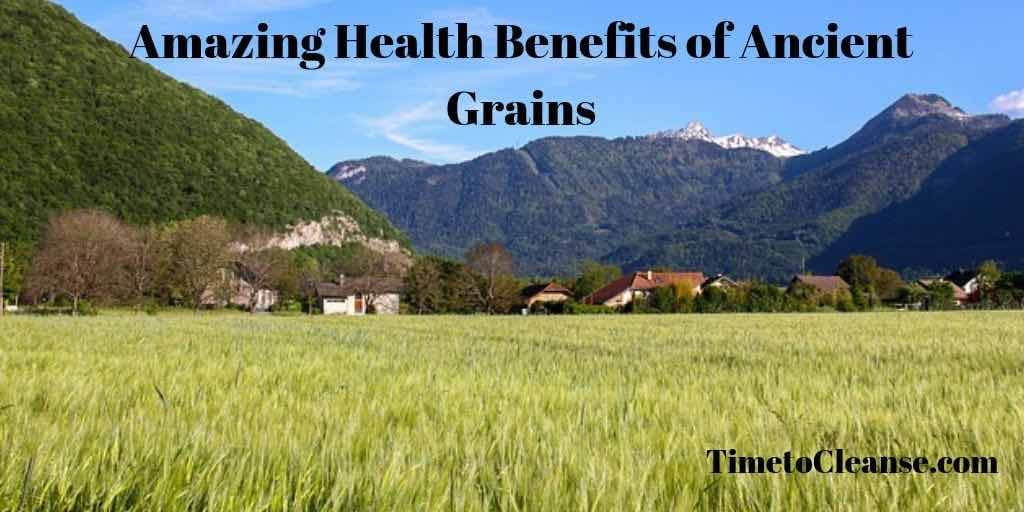 amazing health benefits of ancient grains banner across a blue sky with mountians in the background and a field of millet