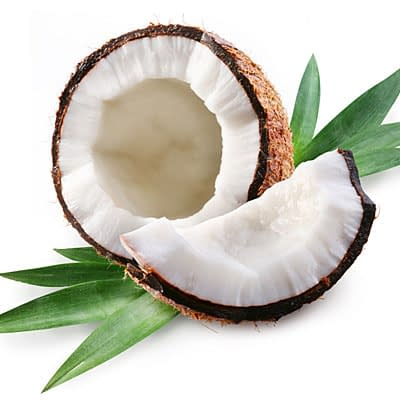 coconut oil shell