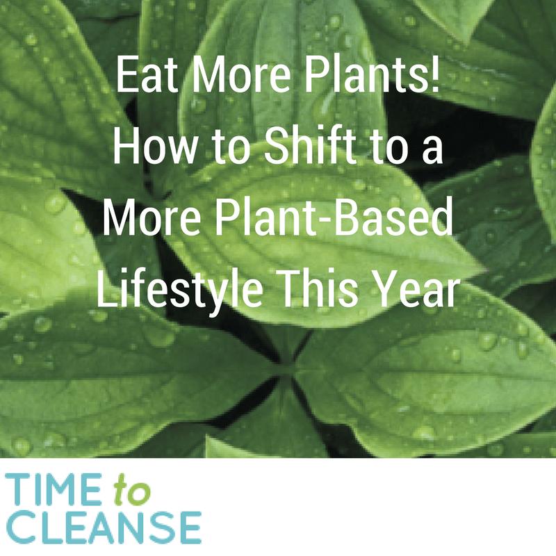 plant based lifestyle isagenix